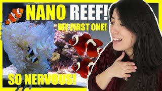 NEW NANO Saltwater Aquarium | Setting Up My Reef Tank by Emzotic