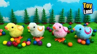 Chicks Xylophone Funny Animals Colors Videos for Kids | TOYLAND