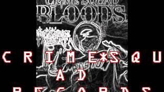 CRIME SQUAD BLOODS