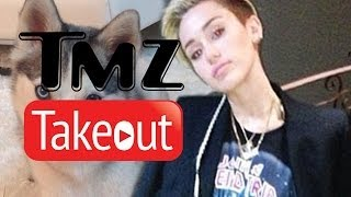Miley Cyrus, Leonardo DiCaprio, And Kate Upton - TMZ Takeout -