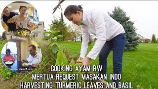 Video VLOG COOKING AYAM RW | PICKING TURMERIC LEAVES AND BASIL | MERTUA REQUEST MASAKAN INDO MP3, 3GP, MP4, WEBM, AVI, FLV Juni 2019