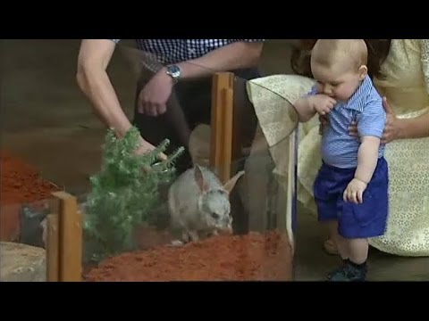 finally - Thousands crammed into Taronga Zoo today to catch a glimpse of a rarely cute occasion, Prince George and his parents meeting George the bilby. Prince George ...