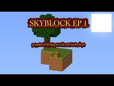 MINECRAFT Skyblock EP 1 PREPARING TO BEAT THE GAME/ENDER DRAGON