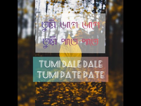 TUMI DALE DALE TUMI PATE PATE | LYRICAL CLIP | NEW EDM ASSAMESE SONG | WHATS APP STATUS(LYRIC BITZ )