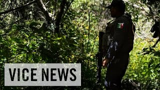 Video The Missing 43: Mexico's Disappeared Students (Full Length) MP3, 3GP, MP4, WEBM, AVI, FLV Juli 2019