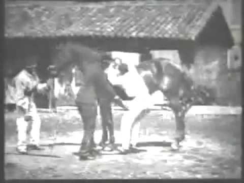 [1895 Film] Trick Riding LOUIS LUMIERE La voltige
