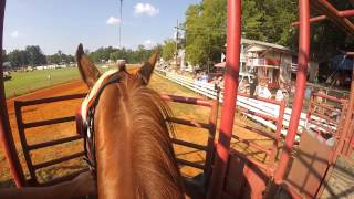 Neshoba County Fair Horse Racing