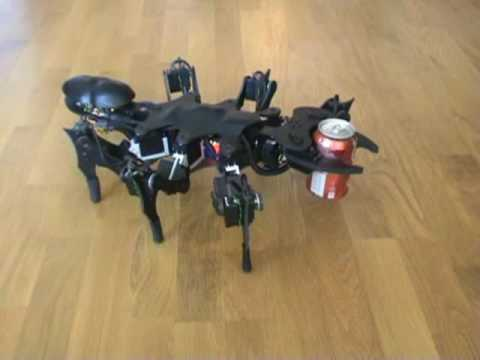 The awesome Robotic Ant