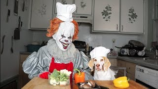 Pennywise & Dog Cook Dinner Together: Funny Dog Maymo by Maymo