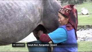 For people living in the remote valleys of Kyrgyzstan's mountain region, producing the traditional drink of fermented mare's milk,...