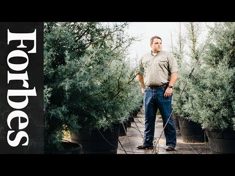 Jonathan Saperstein: The Tree Manufacturer