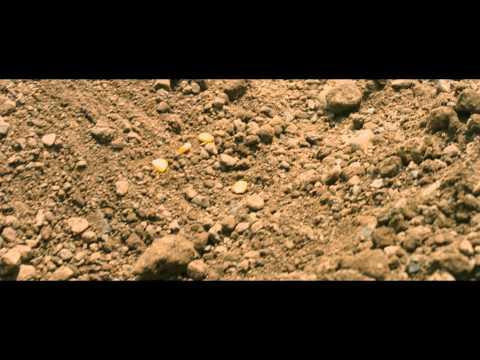 Corn Island - Trailer VOSE?>