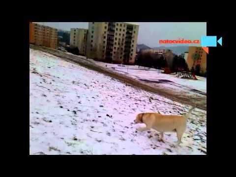 první sníh , konečně