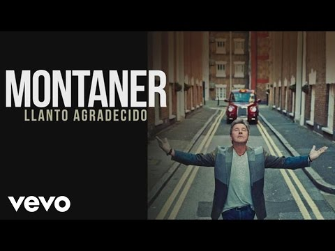 Ricardo Montaner - Llanto Agradecido (Cover Audio)