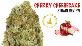 CHERRY CHEESECAKE STRAIN REVIEW by The Cannabis Connoisseur Connection 420