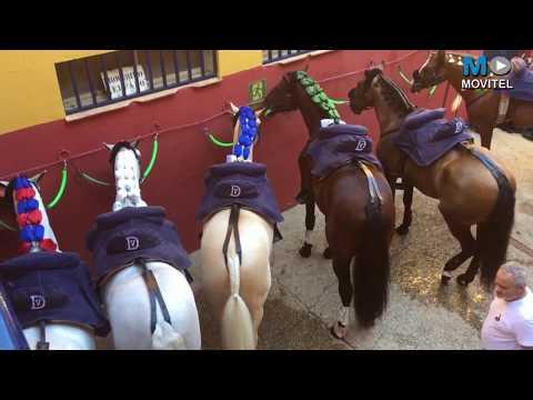 CABALLOS DE REJONEO COLOMBINAS 2019 HUELVA, FAENAS DE PREPARACIÓN Y ENTRENAMIENTOS EN EXTERIOR HORSE