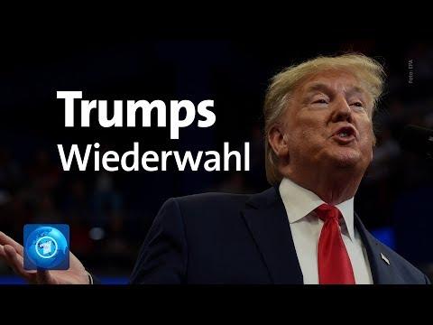 Darum ist Trumps Wiederwahl Wahrscheinlich