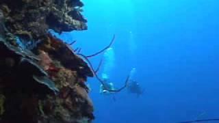 PADI Buceo profundo