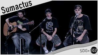 Sumactus: Um Som que faz Seu Corpo Balançar
