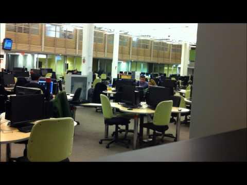 Co-ed Confidential: Femdomination at Sheridan College (sweet) (видео)