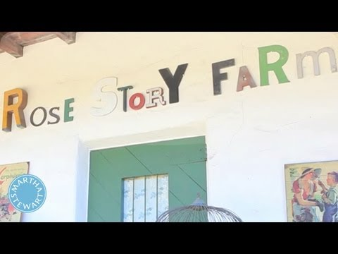 A Tour of Rose Story Farm