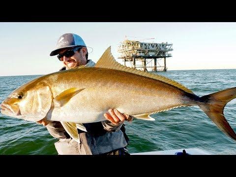 Fishing for Giant Amberjacks and Tuna on Oil Rigs - Thời lượng: 11 phút.