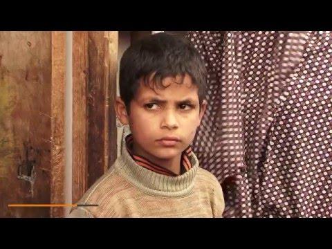 مشروع كفالة ورعاية أرامل قطاع غزة - دار الكتاب والسنة