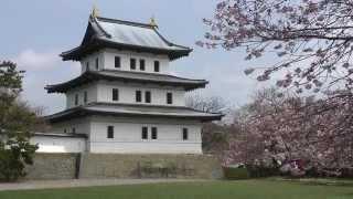 Matsumae Japan  city photos gallery : 北海道 松前城の桜 - Matsumae Castle, Hokkaido, Japan