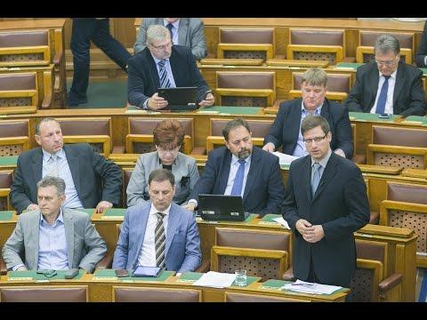 Gulyás Gergely. A Fidesz frakcióvezető-helyettese keddi napirend előtti felszólalásában , szerdán az Európai Parlament (EP) Magyarországgal kapcsolatban két határozattervezetet tárgyal.