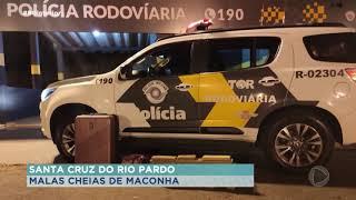 Mulheres são presas com maconha na rodovia em Santa Cruz do Rio Pardo