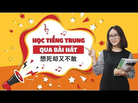 [Vietsub] Học tiếng Trung Qua bài hát 想死却又不敢 (Muốn chết nhưng không dám)