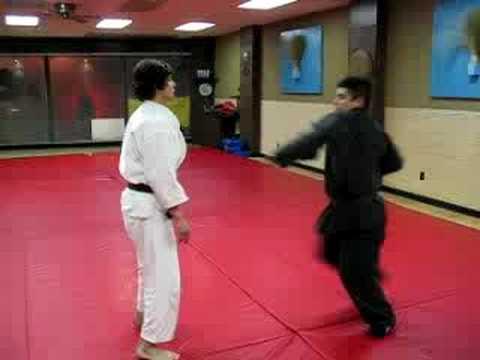 Goshin Jujitsu self-defense techniques