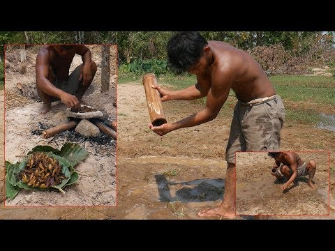 Primitive skill Technology, How to Find Cricket for food by Ancient Skill
