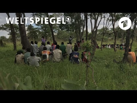Sambia: Kleinbauern müssen Großfarmen weichen | Welts ...