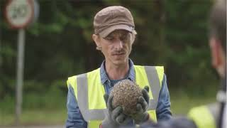 BBC Detectorists Hedgehog Season 3 Episode 5