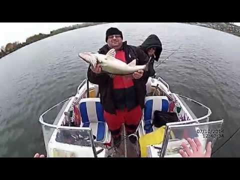 Ловля судака весной силиконом на джиг в озере