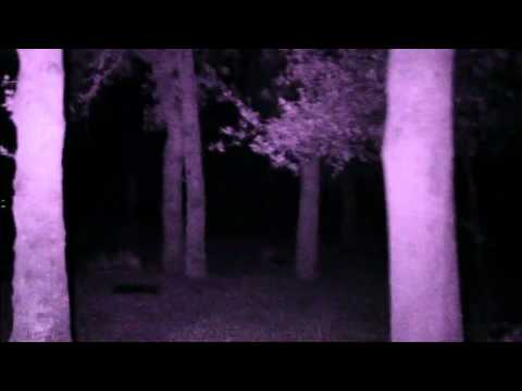 Ghost Trippin – S01E03 – Pinckney Cemetery @CapsParanormal @GhostTrippin