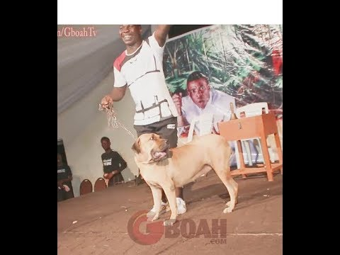 Woli Agba Runs Away As Dele Brought Aja Winning On Stage As Gbenya Adeyinka Storms Woli Agba's Show