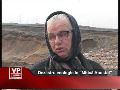 """Dezastru ecologic în """"Mitică Apostol"""""""