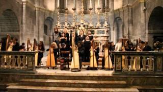 Celtic Harp Orchestra - Evidence of Beauty (Live @ San Fedele, Como - 8/9/10)
