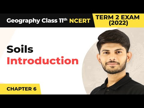 Soils - Introduction | Class 11 Geography