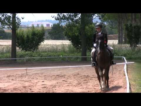 Finales Doma 3 (04/06/11)
