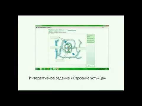 Использование электронных образовательных ресурсов (ЭОР) на уроках биологии (из опыта работы)