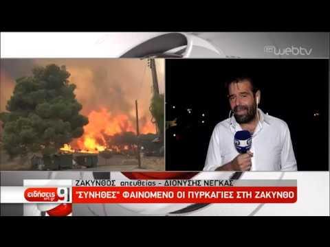Καρέ-καρέ η μάχη με τις φλόγες στη Ζάκυνθο- Στάχτη 10.000 στρέμματα | 16/09/2019 | ΕΡΤ