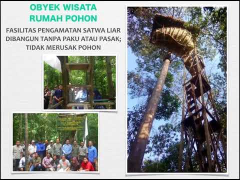 Pengelolaan Ekowisata Terpadu Taman Nasional Way Kambas