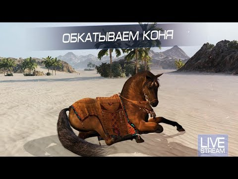Обкатываем Коня !