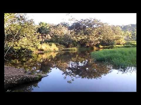 As 3 Cachoeira do Gato do inicio ao fim (Patrocínio do Muriaé-MG)