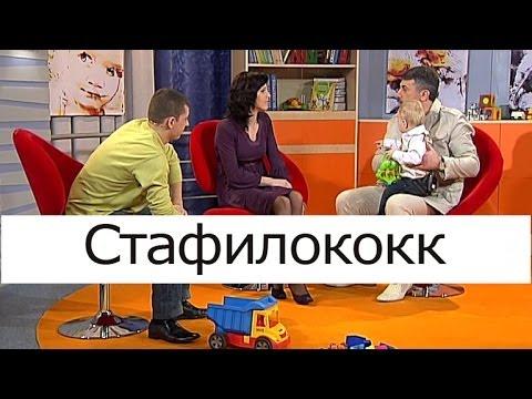 Стафилококк - Школа доктора Комаровского