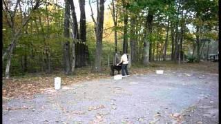 Basic Scent Training W/Poodle