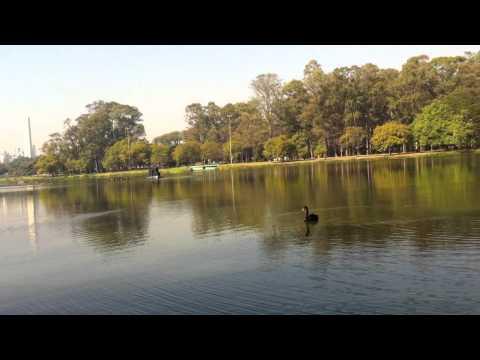 منتزه  Parque Ibirapuera  وسط ساوباولو -رحال الخبر